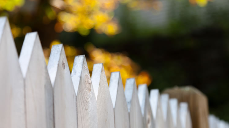 BLOG 66 whats the best fence for your property